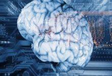 تصویر از پاورپوینت علوم اعصاب چیست