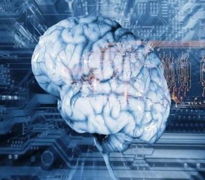 پاورپوینت علوم اعصاب چیست