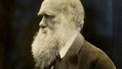 تصویر از پاورپوینت نظریه های داروین و اصول آن
